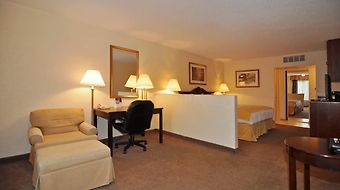 Clarion Inn & Suites Clearwater photos Room
