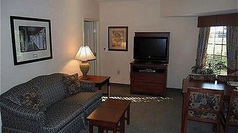 Staybridge Suites Eastchase photos Room Hotel information