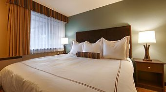 Best Western Windsor Inn photos Room