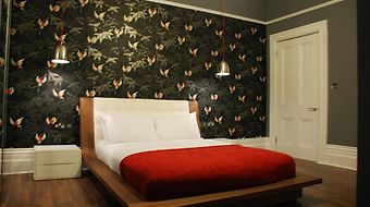 Ravilious Hotel photos Room