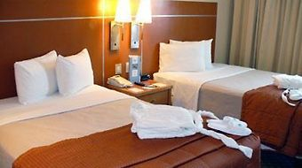 Eurostars Zona Rosa Suites photos Room Executive Suite Double