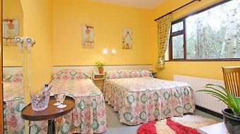 19Th Green Guesthouse photos Room Double / Twin Room (Breakfast included)