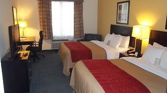 Comfort Inn & Suites Northeast - Gateway photos Room