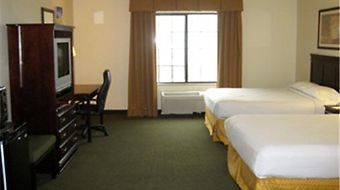 Best Western Executive Inn photos Room