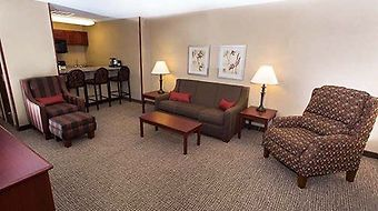 Comfort Inn & Suites photos Room Executive