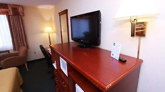 Quality Inn Seatac Airport photos Room