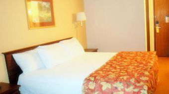 Stay Express Inn And Suites San Antonio Seaworld Medical Ctr photos Room