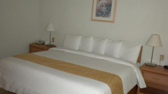 Hotel Plaza Florencia photos Room