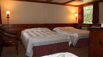 White Trellis Motel photos Room