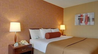 Best Western Plus Rancho Cordova Inn photos Room