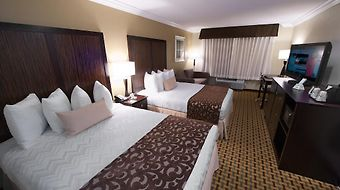 Best Western Plus Orchid Hotel & Suites photos Room