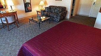 Quality Inn & Suites Bremerton photos Room