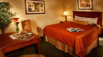 Best Western Plus Garden Inn photos Room