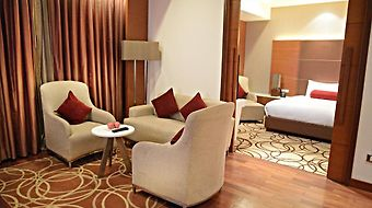 Piccadily Hotel New Delhi photos Room