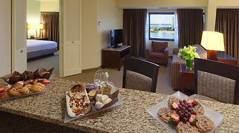 Doubletree Suites By Hilton Hotel Tampa Bay photos Room