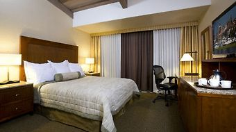 Handlery Hotel San Diego photos Room Standard King Room