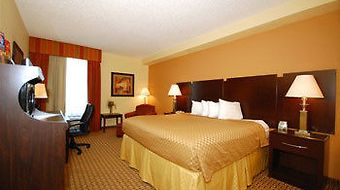 Best Western Plus Universal Inn photos Room Standard Double Room